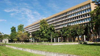 Foto de MEC autoriza aulas online no ensino superior até dezembro